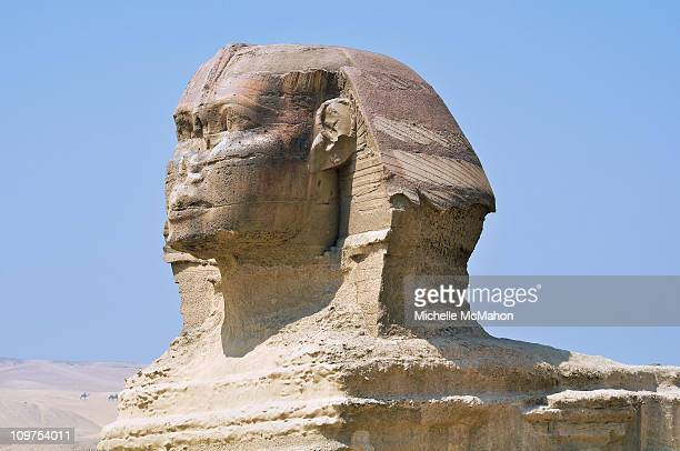 sphinx - giza stock pictures, royalty-free photos & images