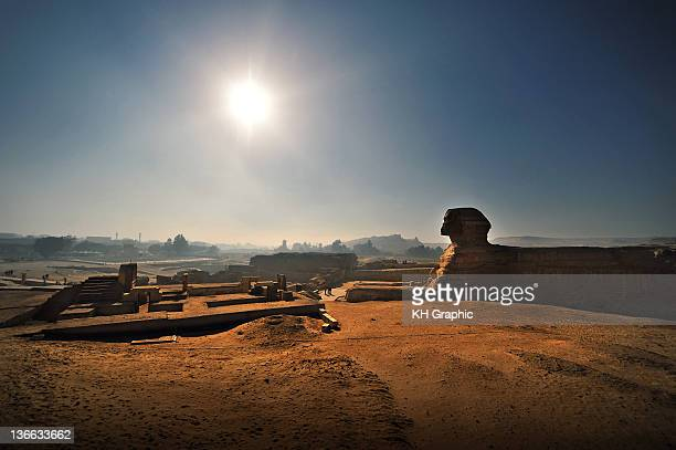 sphinx - the sphinx stock pictures, royalty-free photos & images