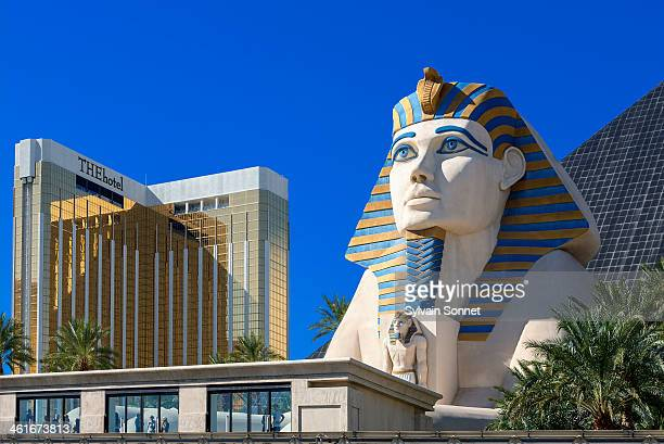 sphinx replica front of luxor hotel and casino. - luxor hotel stock pictures, royalty-free photos & images
