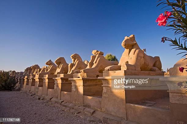 Sphinxes at Karnak Temple
