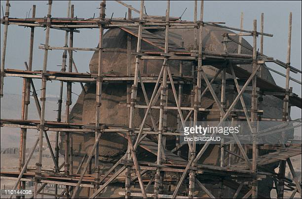 Sphinx's head with its scaffolding in Cairo Egypt on May 01 1990