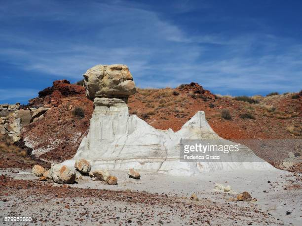 Sphinx-shaped Rock Formation at Ah-Shi-Sle-Pah Wilderness Study Area, NM