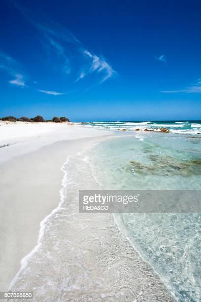 Spiaggia di Bidderosa beach Baronia Orosei Sardinia Italy Europe