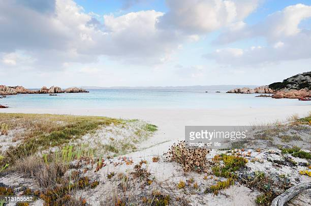 """spiaggia rosa (""""pink beach"""") budelli island la maddalena national park - costa smeralda stock pictures, royalty-free photos & images"""