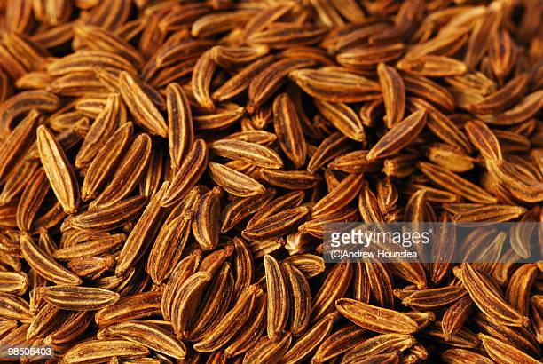 60 Top Caraway Seed Pictures, Photos, & Images - Getty Images
