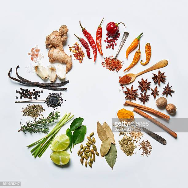 spice colour wheel - spice stock pictures, royalty-free photos & images