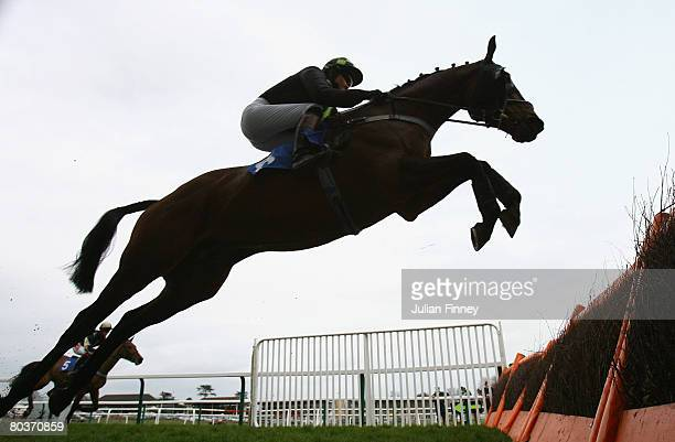 Spider Boy ridden by Miss GD GraceyDavidson jumps a fence in The Colin Derby Rose Memorial Handicap Hurdle Raceat Fontwell Racecourse on March 25...