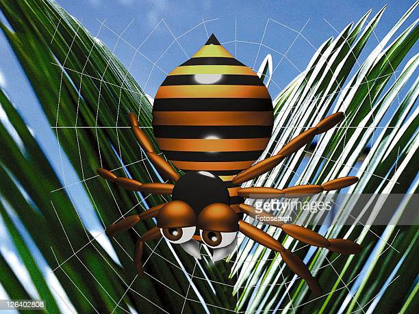 3D, spider, cartoon, cute, animal