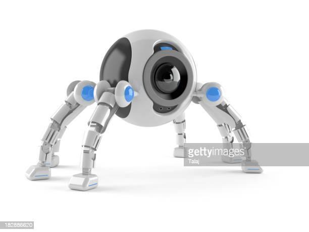 Spider Roboter
