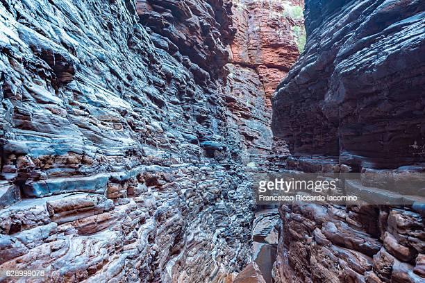 spider walk, hancock gorge, karijini national park, western australia - francesco riccardo iacomino australia foto e immagini stock