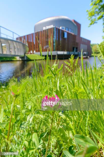 """spiegel theatre at the city canal during springtime in zwolle - """"sjoerd van der wal"""" or """"sjo"""" stock pictures, royalty-free photos & images"""