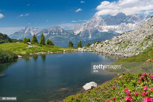 spiegelsee with dachstein glacier, reiteralm, schladming, austria - reflection lake stock photos and pictures