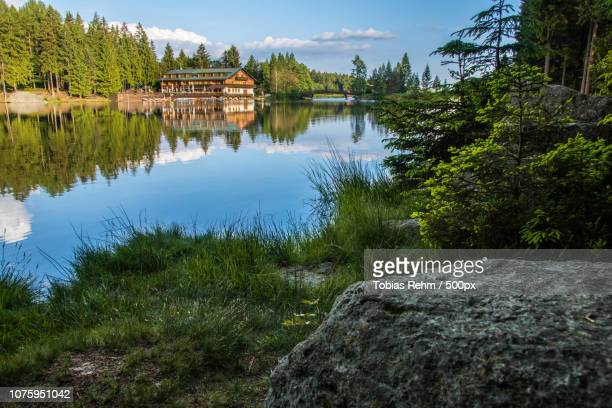 spiegelung im fichtelsee - spiegelung stock pictures, royalty-free photos & images