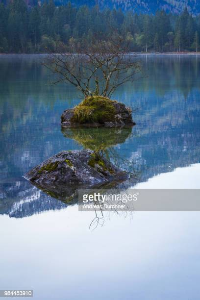 spiegelung - spiegelung stock pictures, royalty-free photos & images