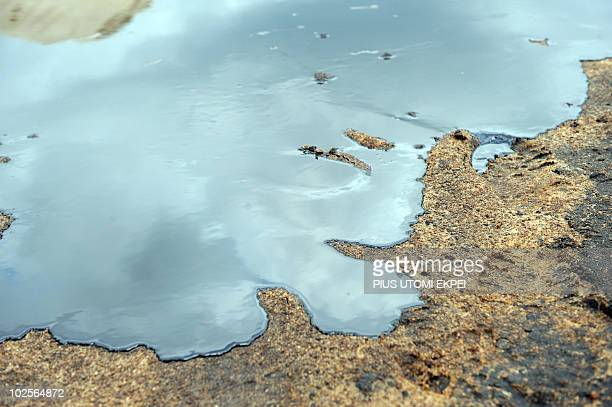 Spilled crude oil floats on the banks of the Niger Delta swamps of Bodo a village in the famous Nigerian oilproducing Ogoniland which hosts the Shell...