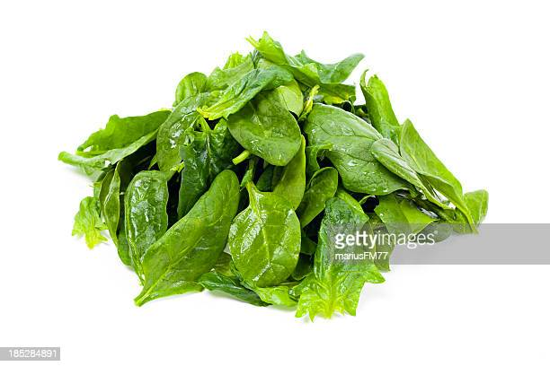 spinach - spinach stock photos and pictures