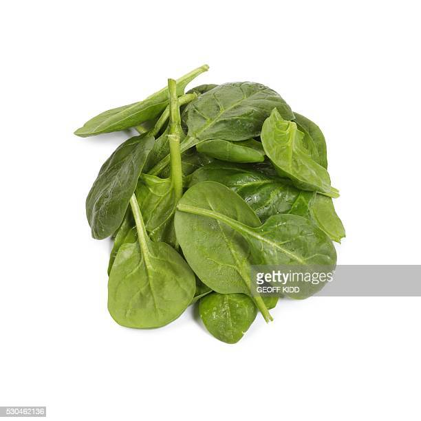 spinach - spinach stock pictures, royalty-free photos & images