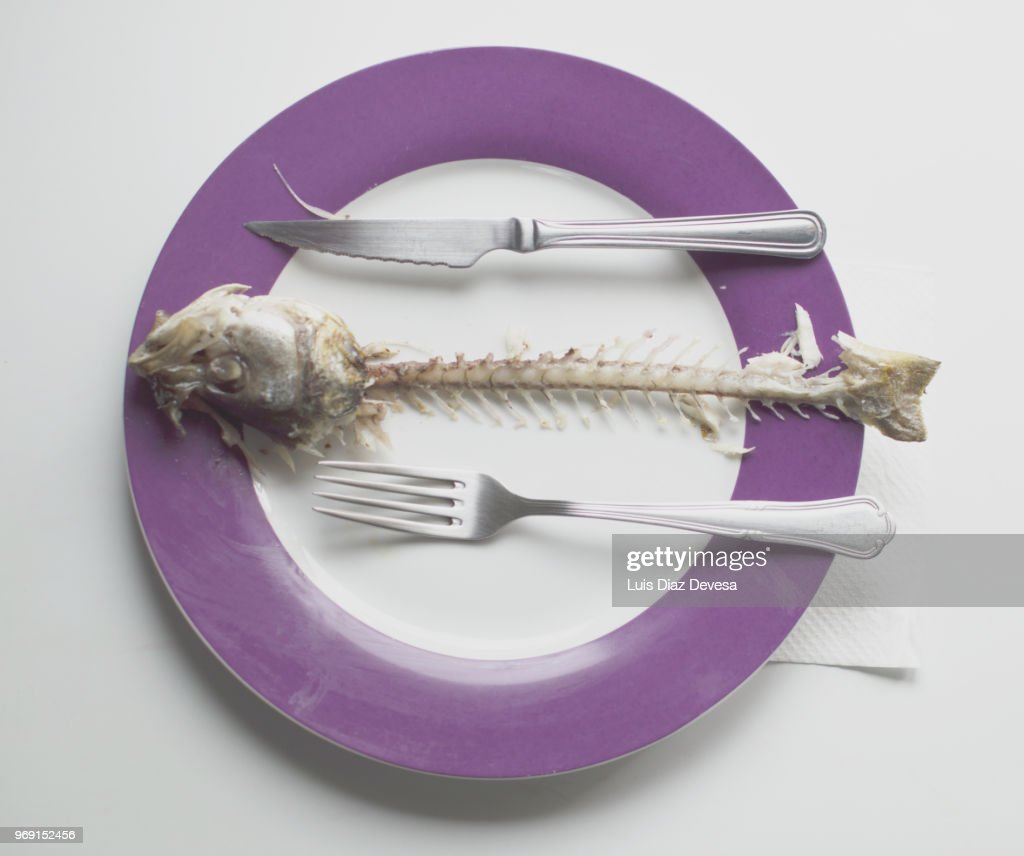 spine bones of a sea bass into plate : Stock Photo