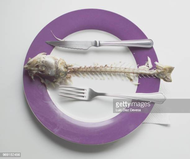 spine bones of a sea bass into plate - fish skeleton stock photos and pictures