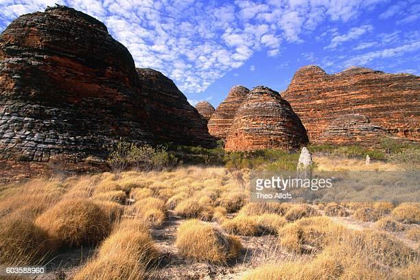 Spinifex grass and rock formation, Purnululu National Park, Western Australia, Australia