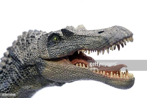 spinosaurus plastic model portrait - bad teeth stock photos and pictures