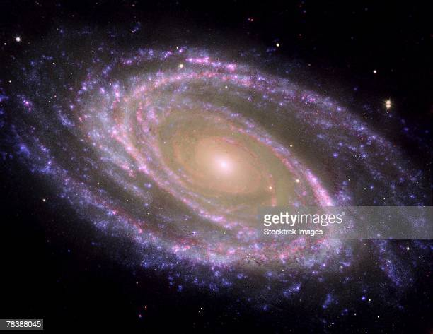 渦巻銀河 ストックフォトと画像 ...