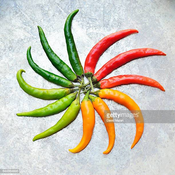 Spiral of red, orange and green chilli peppers