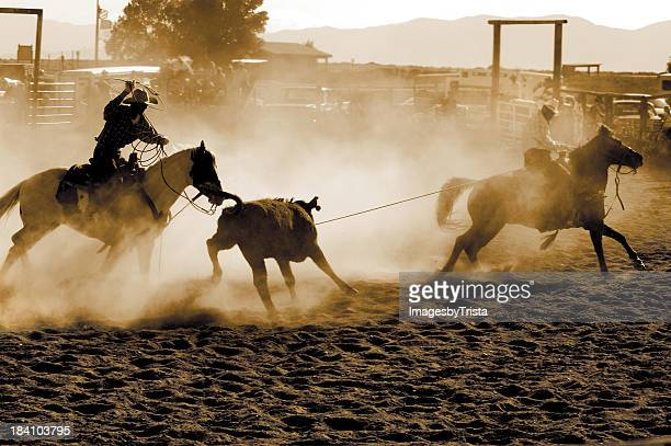 spirit of the west - lasso stockfoto's en -beelden
