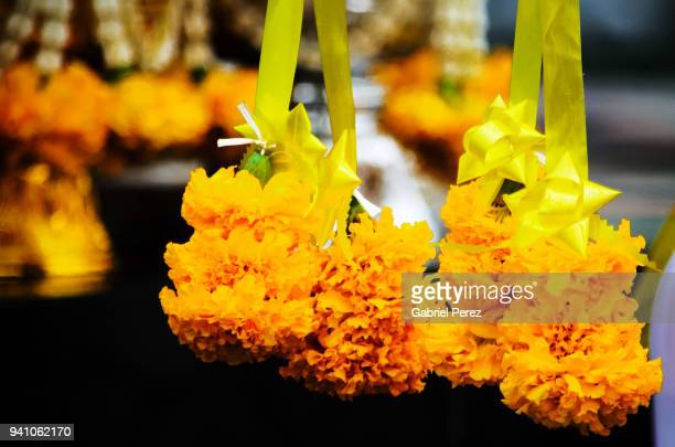 A Spiritual Offering of Marigold Flowers