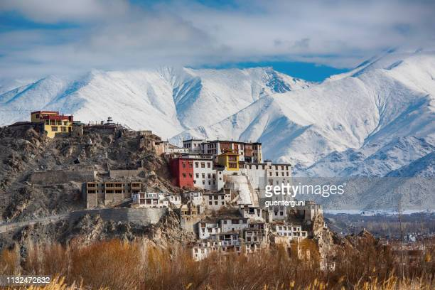 spituk gompa (monastery), indus valley near leh, ladakh, india - monastery stock pictures, royalty-free photos & images