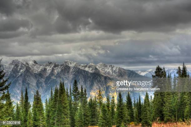 splash of fall colors, snow capped mountains and pines - san juan mountains stock photos and pictures