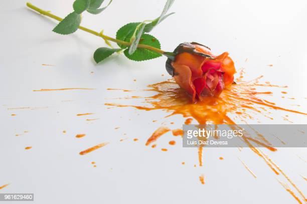 splash of rose - wine stain stockfoto's en -beelden