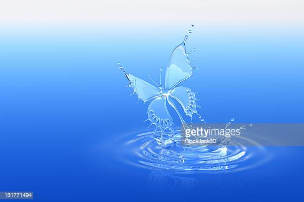 Eau Splash papillon