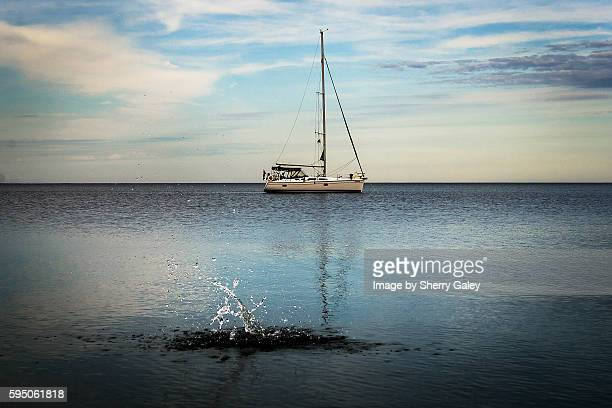 Splash -- sailing on Lake Ontario