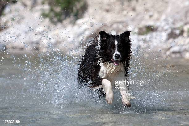 Splashing
