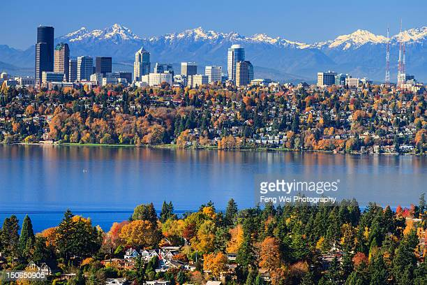 splendid colors of fall in bellevue - bellevue skyline stock pictures, royalty-free photos & images