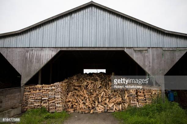 Split firewood dries in a converted dairy barn owned by Robert Marble June 29 2017 in Charlotte Vermont Marble is a firewood supplier who has cut and...