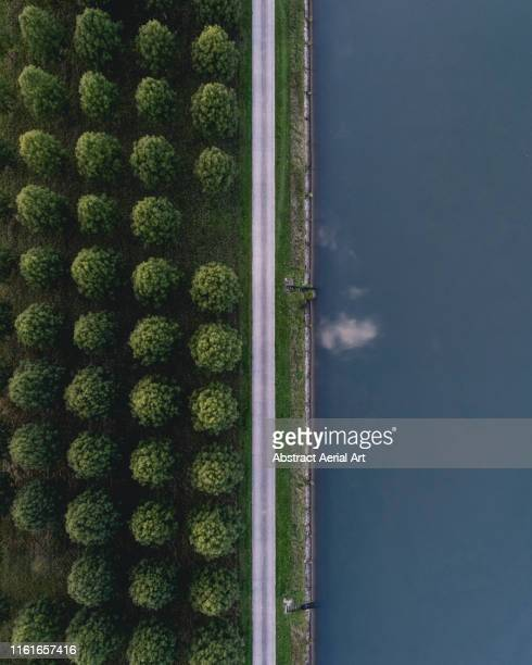 split image of a canal and rows of trees taken from above, belgium - kanal stock-fotos und bilder