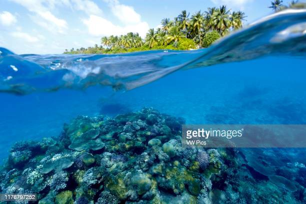 Split image of pristine coral reef and island Rongelap Marshall Islands Micronesia