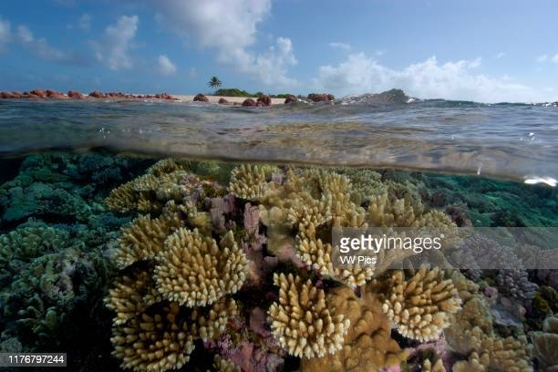 Split image of pristine coral reef and sky Rongelap Marshall Islands Micronesia