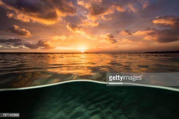 Split level view of ocean at sunset, Tasmania, Australia