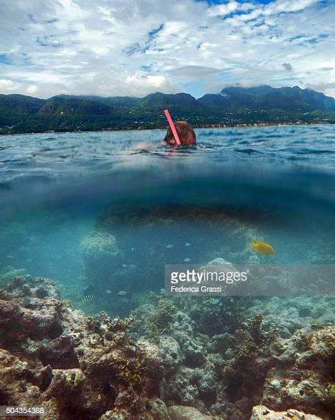 split-level view of man snorkeling in seychelles - mezzanine photos et images de collection