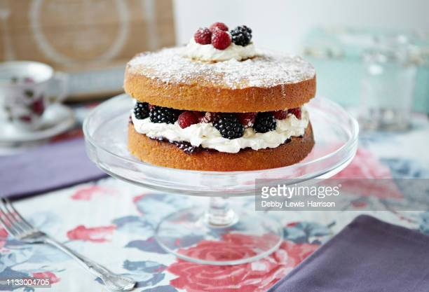 sponge cake with berries on platter - cake stock pictures, royalty-free photos & images