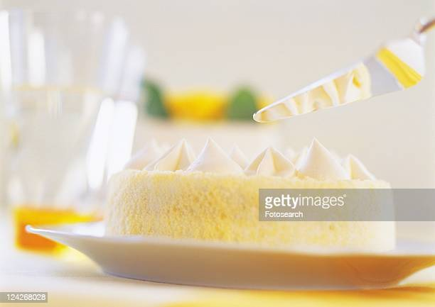 Sponge cake with whipped cream