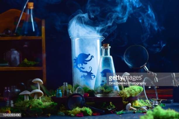 spooky botanist workplace with predatory plant silhouette in a lab bottle. dangerous gmo and bio experiments. funny halloween concept with copy space. - mad scientist stock photos and pictures