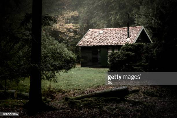spooky cabin in the woods - bos stockfoto's en -beelden