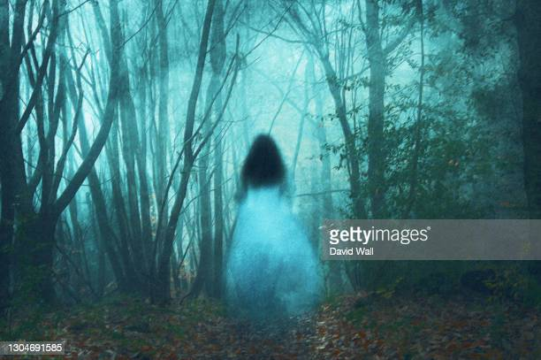 a spooky concept, of a ghostly woman in a long white dress. in a forest. on a foggy winters day. with a grunge, textured edit. - ethereal stock pictures, royalty-free photos & images