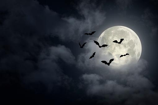 Spooky Halloween Sky 1270121259