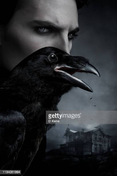 spooky portrait of a man with raven - gothic stock pictures, royalty-free photos & images
