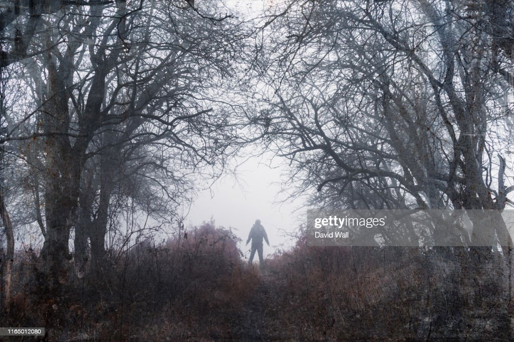 A spooky silhouette of a figure with arms outstretched, standing in a foggy winters forest. With a grunge, grainy, vintage edit. : Stock Photo